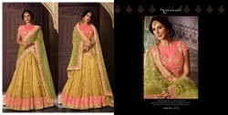 LIRIL & YELLOW NET LEHENGA CHOLI