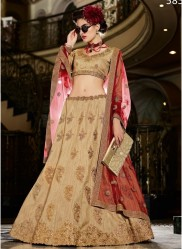 Chikoo Silk Light Embroidery Lehenga Choli